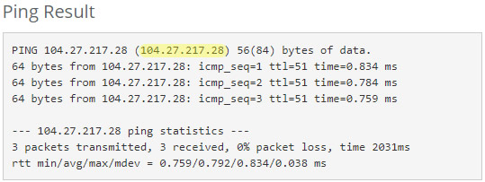DNS Ping Results